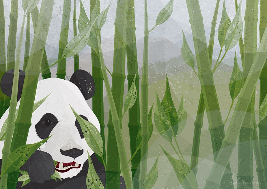 Giant Panda - © Curating Tomorrow